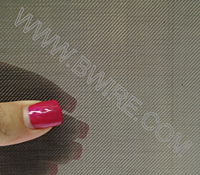 Nickel 205 Standard Grade Wire Cloth